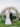 couple portrait in front of the lush circular wedding arch of pastel florals