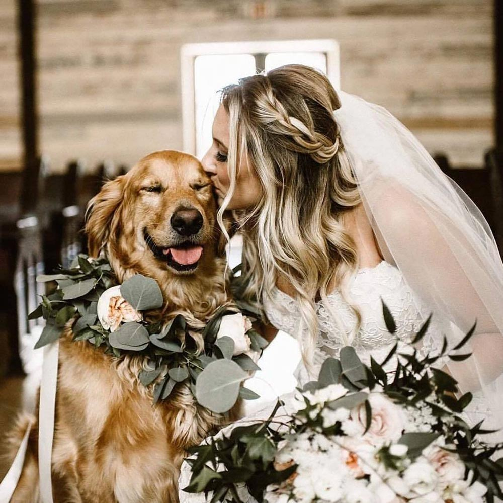 golden retriever dog of honor with flower wreath