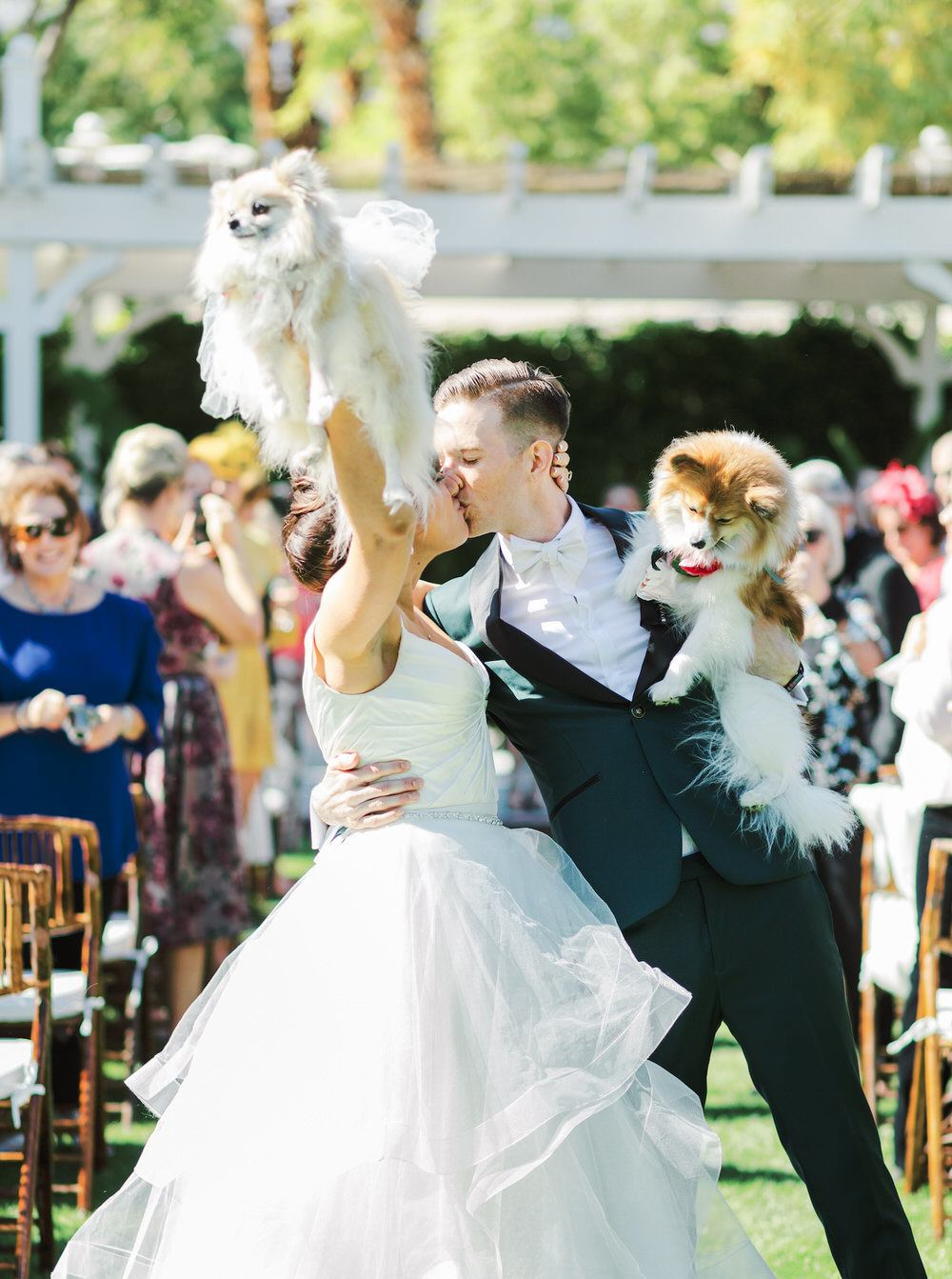 bride and groom kiss while holding their dogs