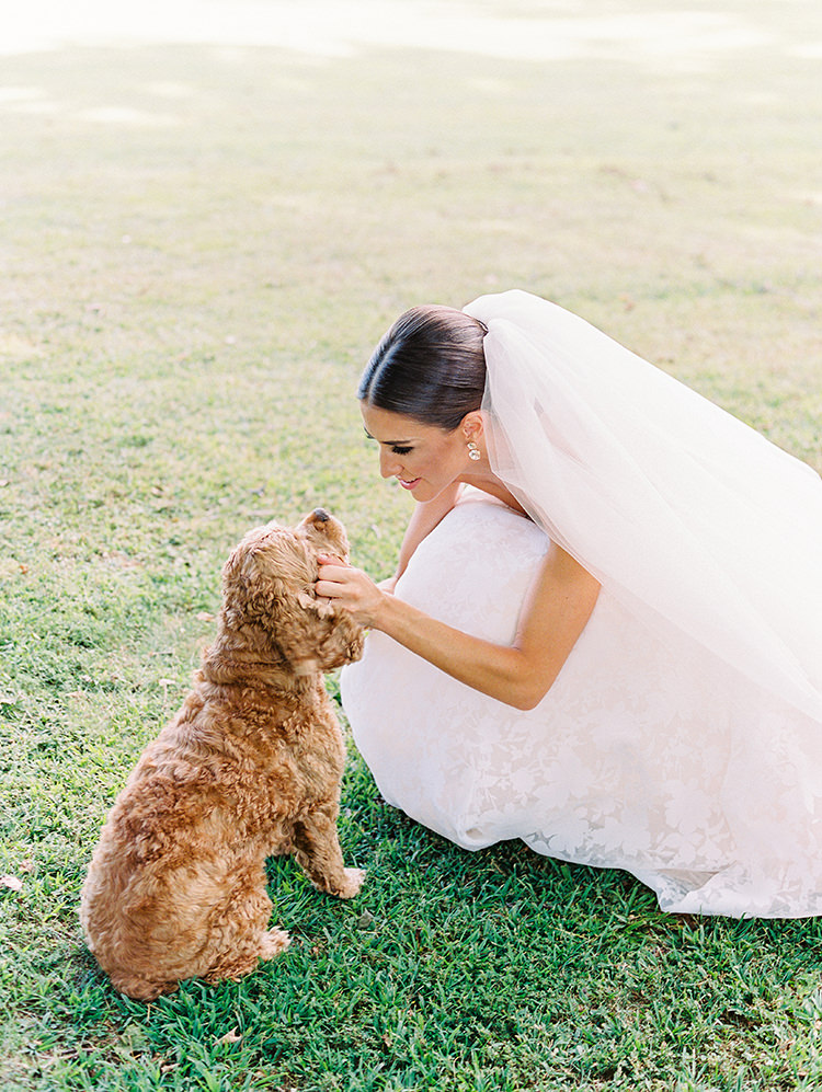 brides with dogs - photo by Love by Serena https://ruffledblog.com/elegant-annapolis-wedding-with-romantic-greenery