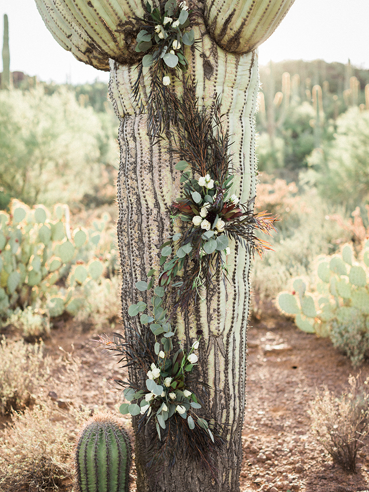 cactus with flowers - https://ruffledblog.com/fall-desert-elopement-inspiration-with-burgundy-and-lavender