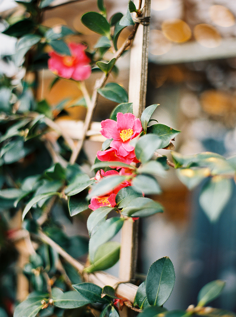 floral inspo - photo by Danielle Poff Photography http://ruffledblog.com/fun-and-flirty-bridal-shower-inspiration