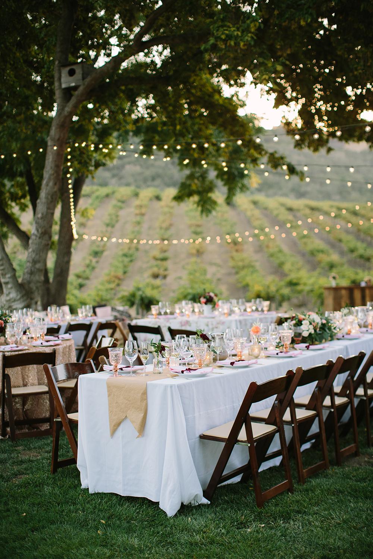 Osprey vineyard wedding
