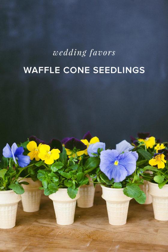 Natural DIY Wedding Favors: Waffle Cone Seedlings