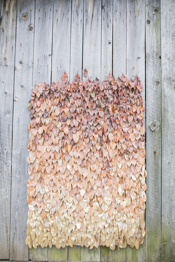 Fall Photo Booth Back Drop Inspiration Of