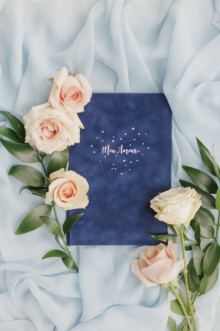 blue velvet vow books - photo by Kristen Booth Photographer http://ruffledblog.com/majestic-castle-wedding-inspiration-with-celestial-accents