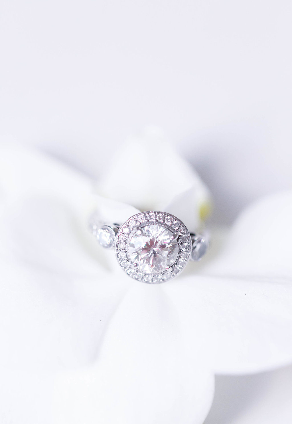 round engagement rings - photo by Virginia Ashley Photography http://ruffledblog.com/modern-industrial-wedding-inspiration-with-tropical-vibes