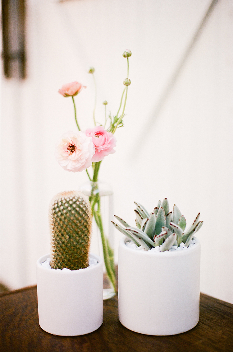 simple desert wedding centerpieces - photo by Birds of a Feather http://ruffledblog.com/soft-and-romantic-wedding-at-lombardi-house