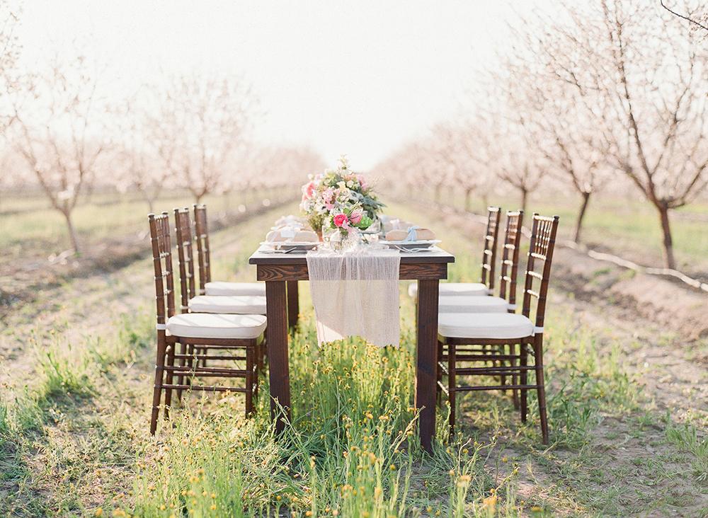 wedding receptions - photo by Katie McGihon Photography https://ruffledblog.com/spring-almond-orchard-wedding-inspiration