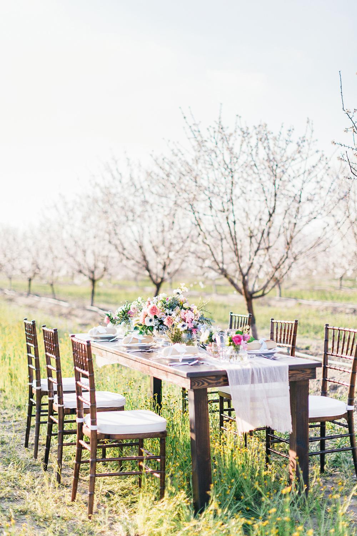 orchard weddings - photo by Katie McGihon Photography https://ruffledblog.com/spring-almond-orchard-wedding-inspiration