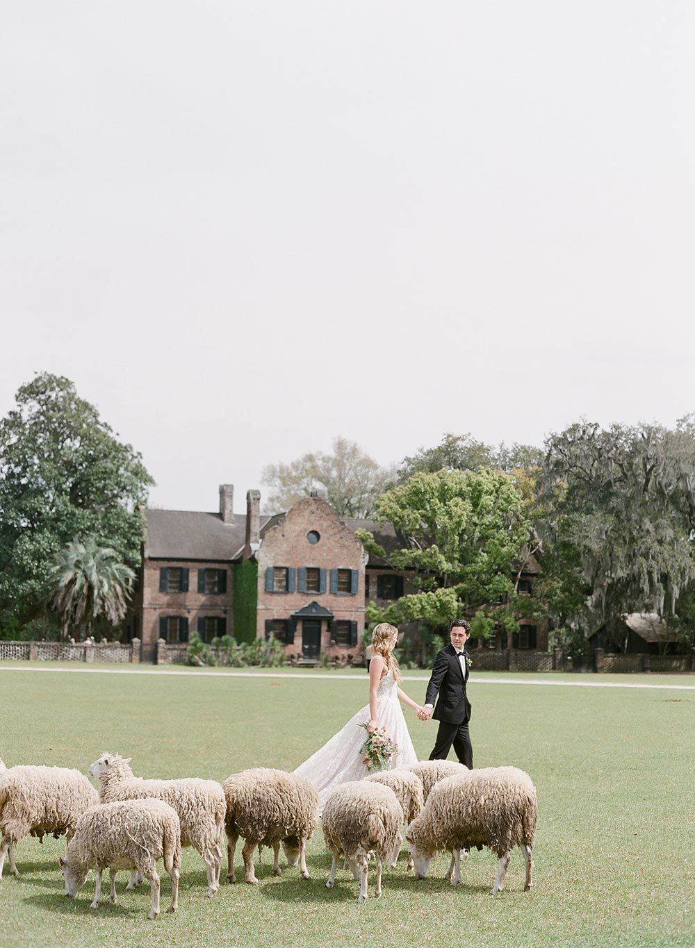 Styled Social Charleston Gilded Countryside 27