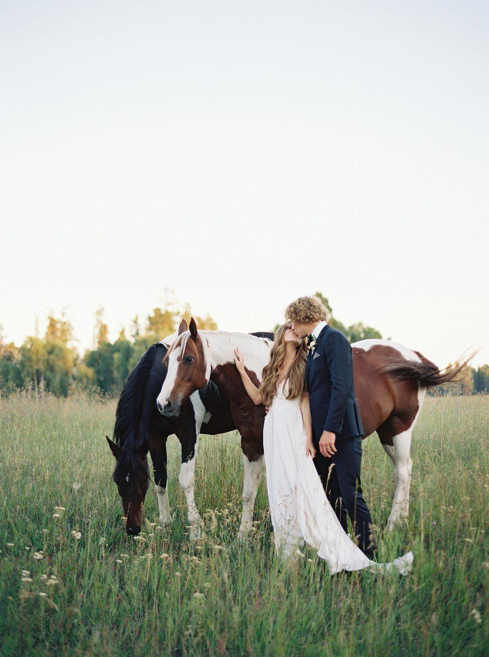 bride and groom kiss in the Montana mountains with 2 horses