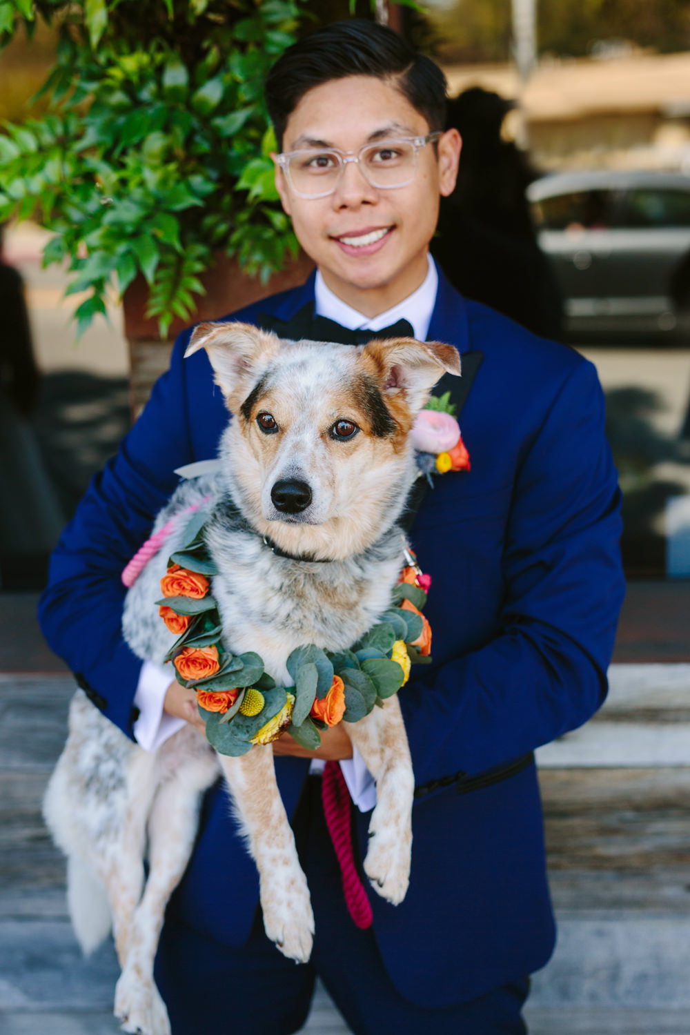 pets at weddings - photo by Priscila Valentina http://ruffledblog.com/whimsical-vibrant-laguna-beach-wedding